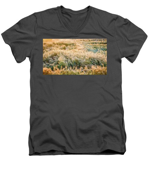 Morning Wheat Men's V-Neck T-Shirt
