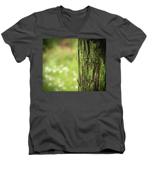 Moss Men's V-Neck T-Shirt