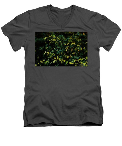 Moss In Colors Men's V-Neck T-Shirt