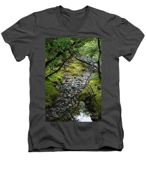 Moss Stream Men's V-Neck T-Shirt