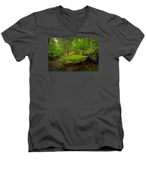Mossy Rocks In Little Creek Park Men's V-Neck T-Shirt