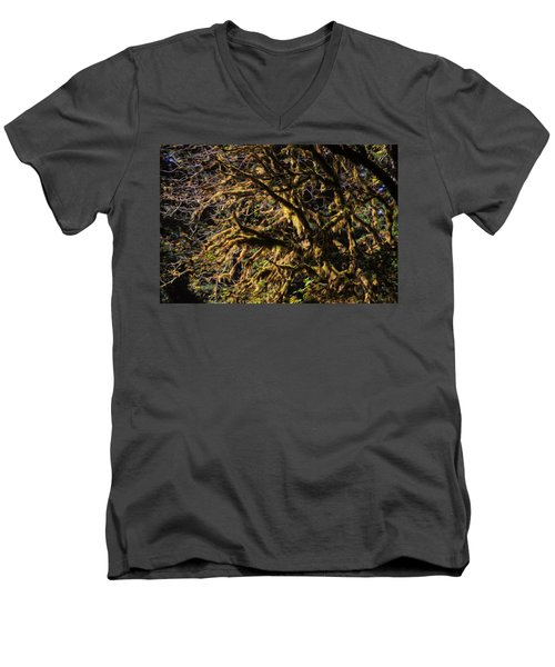 Mossy Trees Men's V-Neck T-Shirt