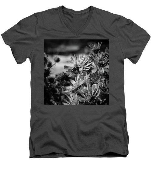 Moth And Flowers Men's V-Neck T-Shirt