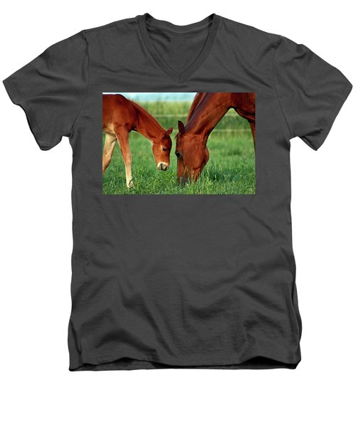 Mother And Foal 3377 H_2 Men's V-Neck T-Shirt