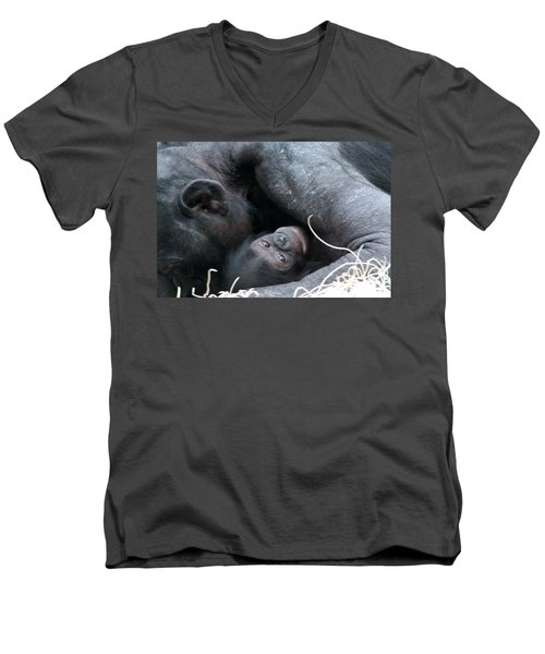 Men's V-Neck T-Shirt featuring the photograph Mother Bonobo And Her Baby by Laurel Talabere