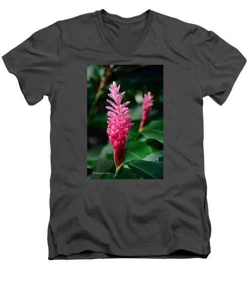 Mother Nature's Gift Men's V-Neck T-Shirt by Edgar Torres