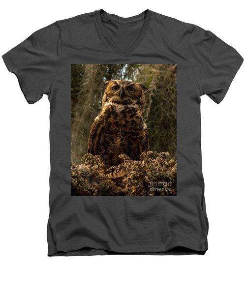 Mother Owl Posing Men's V-Neck T-Shirt by Jane Axman
