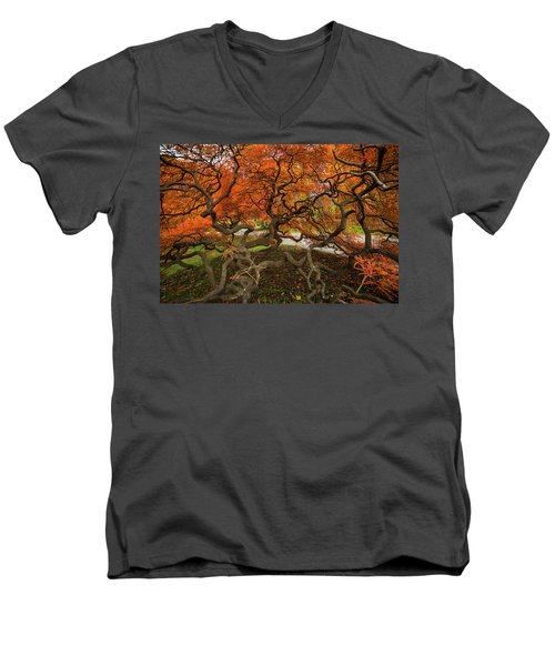 Mount Auburn Cemetery Beautiful Japanese Maple Tree Orange Autumn Colors Branches Men's V-Neck T-Shirt