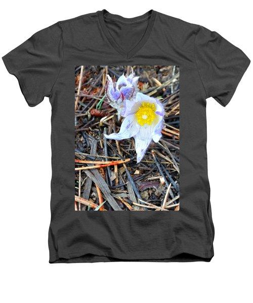 Mount Margaret Spring 14344 Men's V-Neck T-Shirt