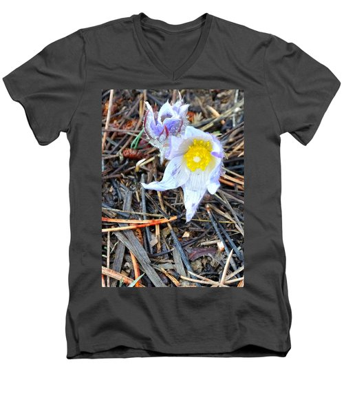 Mount Margaret Spring 14344 Men's V-Neck T-Shirt