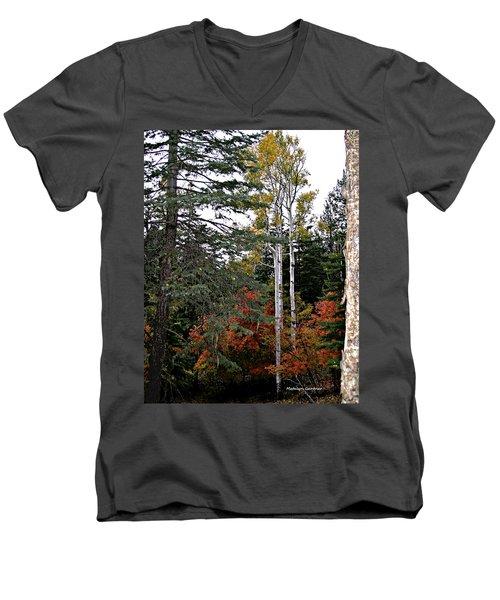Mountain Autumn Men's V-Neck T-Shirt