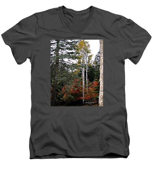 Mountain Autumn Men's V-Neck T-Shirt
