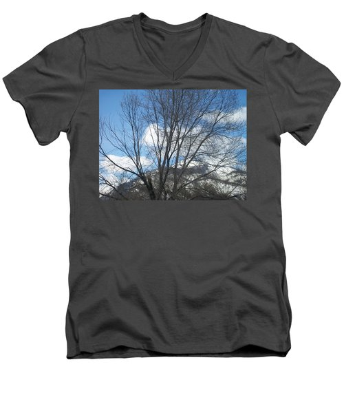 Men's V-Neck T-Shirt featuring the photograph Mountain Backdrop by Jewel Hengen