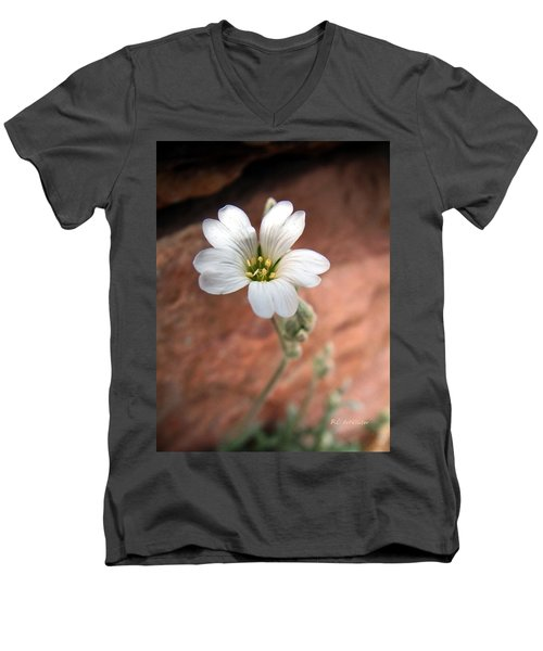 Men's V-Neck T-Shirt featuring the photograph Mountain Beauty by RC DeWinter