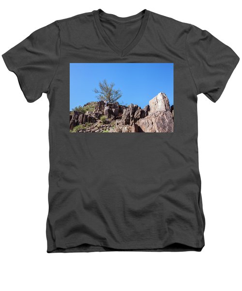 Men's V-Neck T-Shirt featuring the photograph Mountain Bush by Ed Cilley
