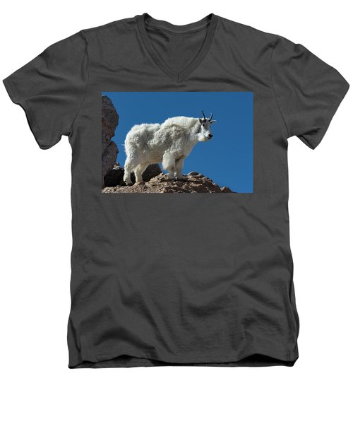 Men's V-Neck T-Shirt featuring the photograph Mountain Goat 2 by Gary Lengyel