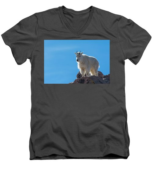 Men's V-Neck T-Shirt featuring the photograph Mountain Goat 4 by Gary Lengyel