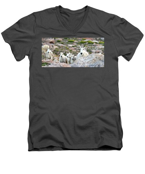 Men's V-Neck T-Shirt featuring the photograph Mountain Goat Family Panorama by Scott Mahon