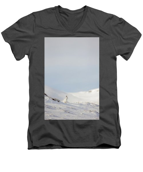 Mountain Hare On Hillside Men's V-Neck T-Shirt