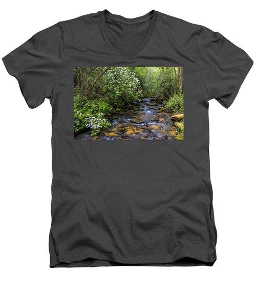 Mountain Laurels Light Up Panther Creek Men's V-Neck T-Shirt