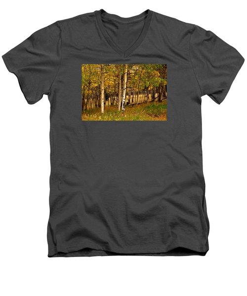 Men's V-Neck T-Shirt featuring the photograph Mountain Meadow by Laura Ragland