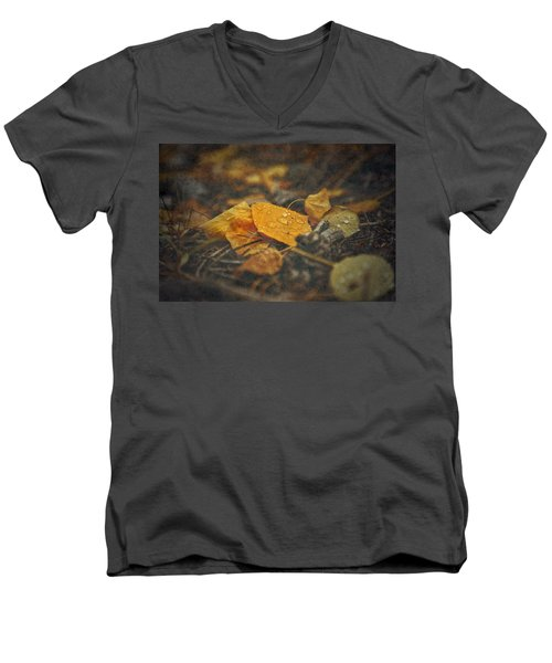 Men's V-Neck T-Shirt featuring the photograph Mountain Months  by Mark Ross