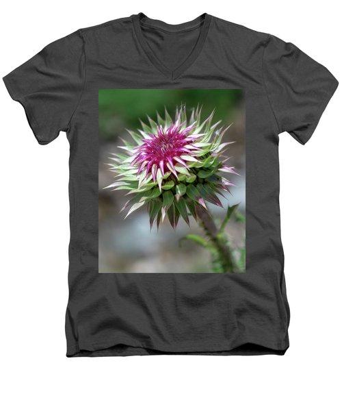 Mountain Thistle Men's V-Neck T-Shirt