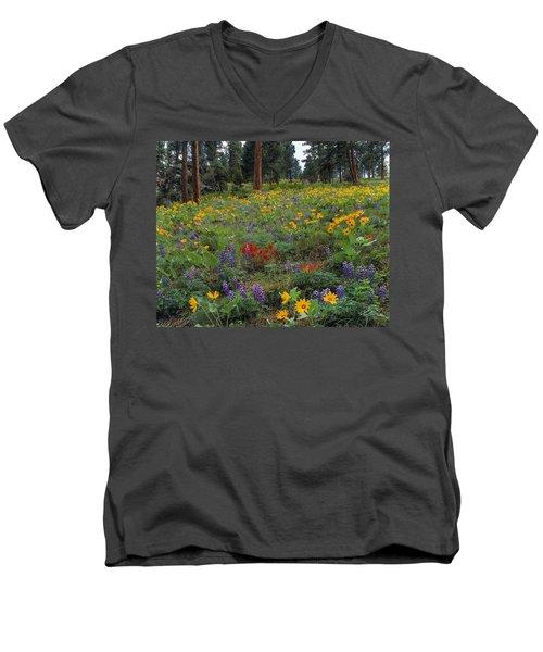 Mountain Wildflowers Men's V-Neck T-Shirt
