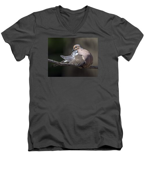 Mourning Dove Profile Men's V-Neck T-Shirt