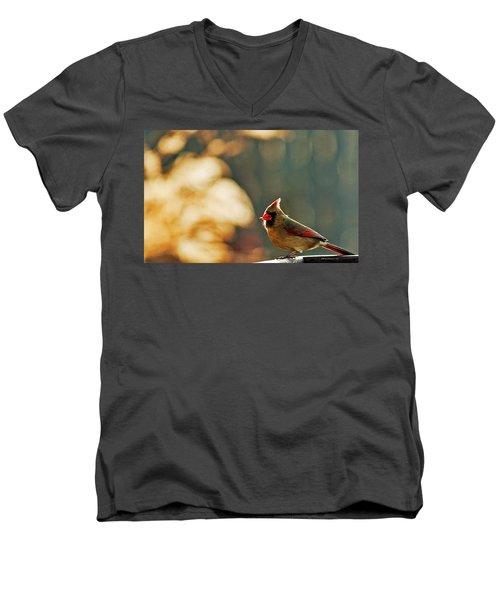 Mouthful Men's V-Neck T-Shirt