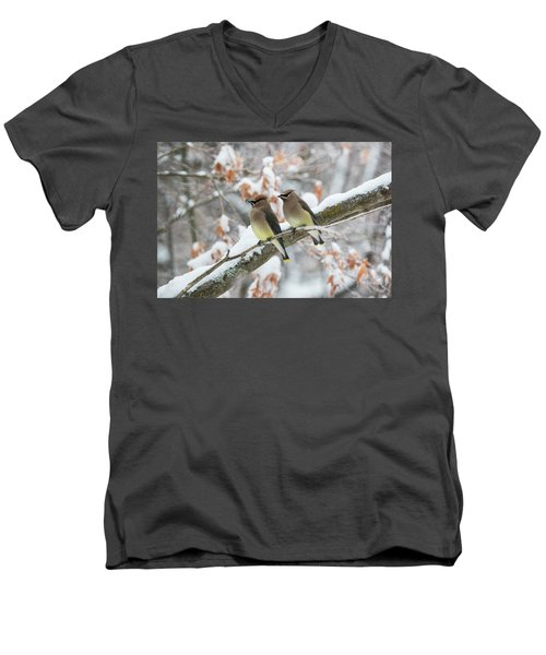 Mr. And Mrs. Cedar Wax Wing Men's V-Neck T-Shirt