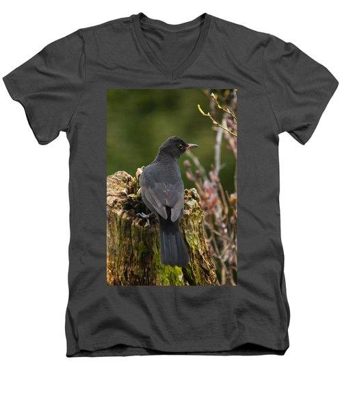 Mr Birdy Men's V-Neck T-Shirt