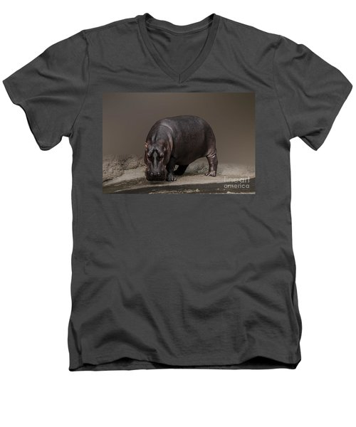 Mr. Hippo Men's V-Neck T-Shirt