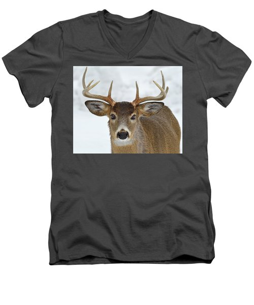 Men's V-Neck T-Shirt featuring the photograph Mug Shot by Tony Beck