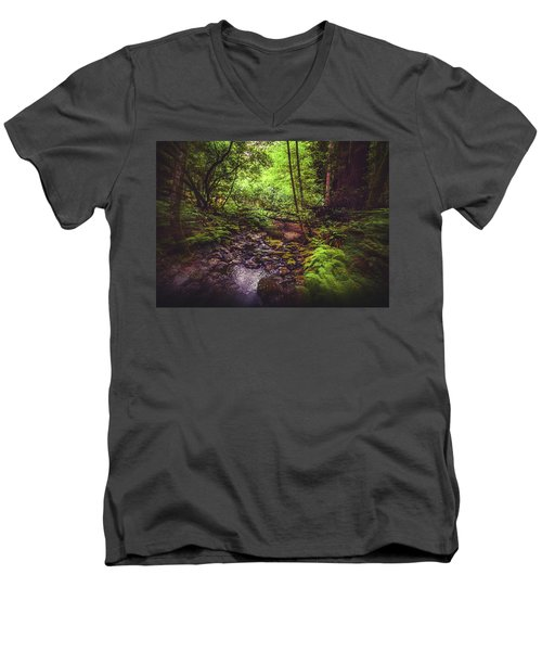 Muir Woods No. 3 Men's V-Neck T-Shirt by Laura DAddona