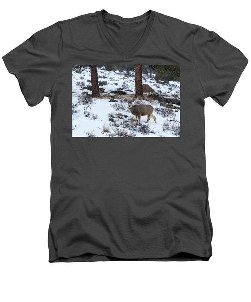 Mule Deer - 8922 Men's V-Neck T-Shirt