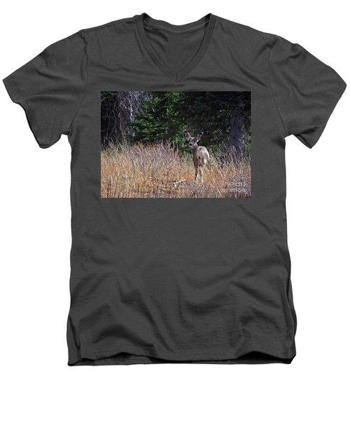 Mule Deer In Utah Men's V-Neck T-Shirt by Cindy Murphy - NightVisions