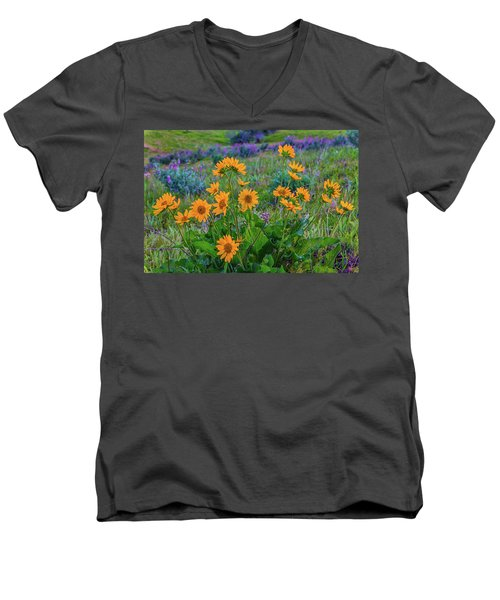 Mule's Ear And Lupine Men's V-Neck T-Shirt