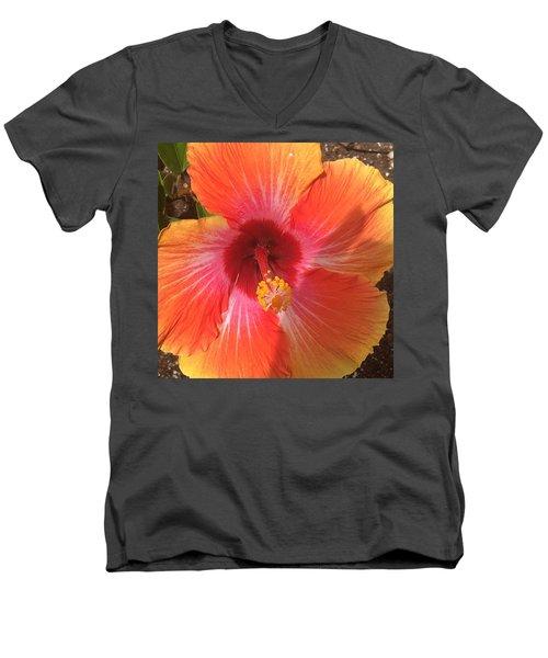 Multi-colored Beauty Men's V-Neck T-Shirt
