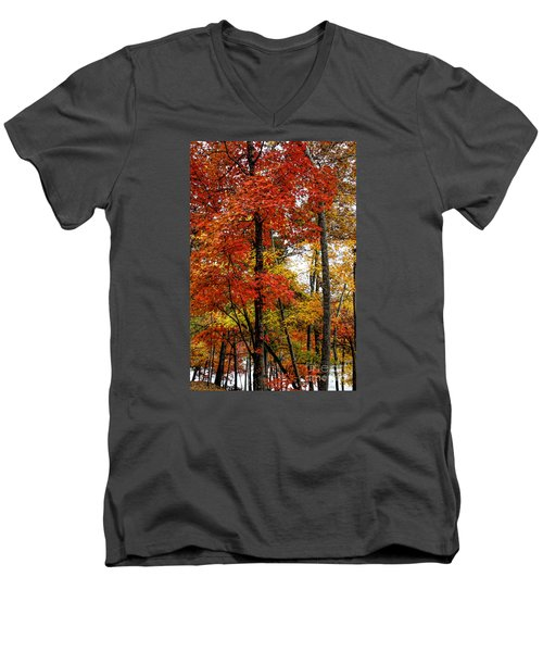 Multi-colored Leaves Men's V-Neck T-Shirt by Barbara Bowen