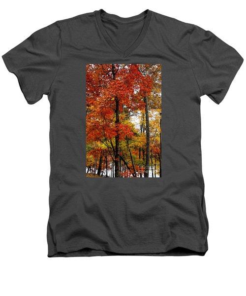 Multi-colored Leaves Men's V-Neck T-Shirt