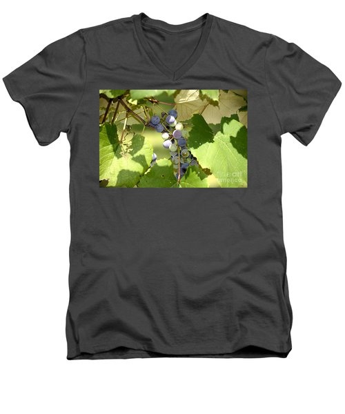 Muscadine Grapes Men's V-Neck T-Shirt