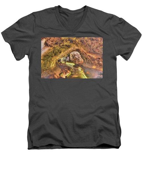 Mushpot Cave Men's V-Neck T-Shirt