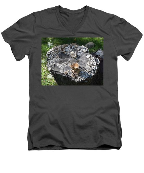 Men's V-Neck T-Shirt featuring the photograph Mushroom Stump by R  Allen Swezey