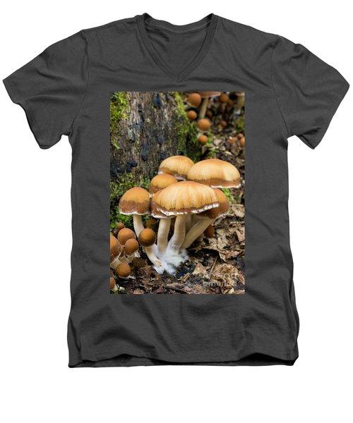 Men's V-Neck T-Shirt featuring the photograph Mushrooms - D009959 by Daniel Dempster