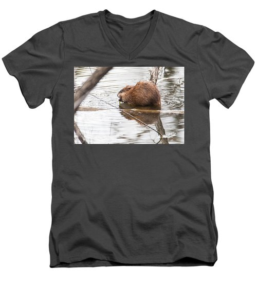 Men's V-Neck T-Shirt featuring the photograph Muskrat Spring Meal by Edward Peterson