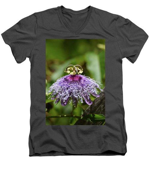 My Passion Men's V-Neck T-Shirt