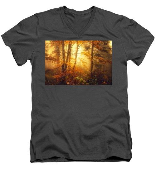 Mystic Fog Men's V-Neck T-Shirt