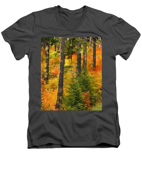 N W Autumn Men's V-Neck T-Shirt by Wes and Dotty Weber