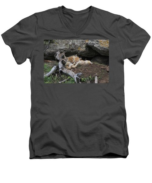 Men's V-Neck T-Shirt featuring the photograph Nap Time by Steve Stuller